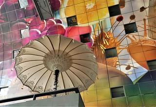 Geen regen / No rain  ...2 Color