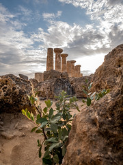Heracles tempio (hamael_julie) Tags: valledeitempli sicily sicilia sicile agrigente agrigento valléedestemples templedhéraclès valleyofthetemples templeofheracles gx80 1232mm