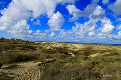 Dunes du Touque
