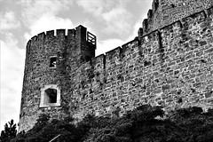 Castle (Wulfchef) Tags: castle manor wall defensive battaglie battles gorizia tower bastion bailey friuli venezia giulia blackwhite black white monochrome landscape bianconero bianco nero clouds