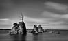 Three Graces | Garibaldi | Oregon (sunrisesoup) Tags: threegraces oregon garibaldi usa longexposure pacificocean seastacks cormorants birds nature