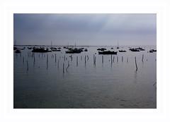sur le Bassin d'Arcachon . . .photo couleur (nickylechatreux) Tags: landscape bateau mer eau baie arcachon matin 7 days flickr