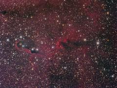IC1396A - Elephant's Trunk in LRGB (GraemeCoates) Tags: astrometrydotnet:id=nova2255798 astrometrydotnet:status=solved astrophotography astronomy ic1396 cepheus sbig elephant trunk