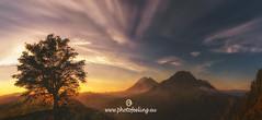 The tree and the volcanoes (joana dueñas) Tags: volcanoes indonesia bali pacificocean tree sunrise joanadueñas summer pinggan agung abeng idyllic