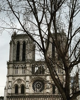 The beginning || Notre-Dame de Paris.