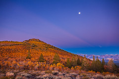 Blue Autumn Moonset (DM Weber) Tags: mono county california aspen fall autumn moonset crepuscular blue hour landscape psa148 dmweber canon eos5dmk2
