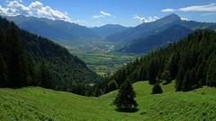 The Green Green Grass (Daphne-8) Tags: alps heidiland schweiz switzerland suisse svizzera svizra zwitserland mountains montagnes bergen montanas chur maienfeld view vista aussicht alpen heidihütte