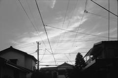 ql19_20171009_0020 (frenchvalve) Tags: sky line canon canonet ql19 film monochrome kodak 400tx