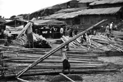 Raise Your Own Tent (N A Y E E M) Tags: refugees refugeecamp rohingya settlement bamboo street coxsbazaar bangladesh genocide ethniccleansing exodus rohingyagenocide saverohingya crimesagainsthumanity