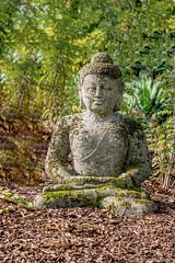 Zen Soyons Zen! (musette thierry) Tags: musette thierry d600 park jardin pairidaiza zen brugelette hainaut belgique europe 28300mm culte