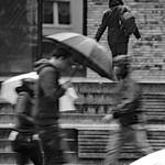 Regenwetter (04) thumbnail