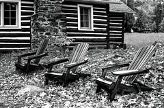 Three Muskoka Chairs_ (Bill Smith1) Tags: believeinfilm billsmithsphotography billiebearresort hc110b heyfsc muskoka olympusom2n rolleisuperpan200 zuikomc50f18lens