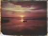 Rowing during the sunset (Maija Karisma) Tags: polaroid instant pola littlebitbetterscan graflex graflexpacemakerspeedgraphic 559 4x5 peelapart expiredfilm nature largeformat autumnpolaroidweek roidweek2017