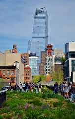 The High Line, 04.23.16 (gigi_nyc) Tags: highline highlinepark thehighline spring nyc newyorkcity