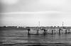 17.10.11_004 (darbochrome) Tags: film fujinon100mmf35 g690 hp5 sandiego shelterisland