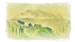 * Isola d'Elba :  Impressionismo d'autunno nella nebbia * Autumn impressionism in the fog * (argia world 1) Tags: isoladelba elbaisland landscape paesaggio alberi trees foresta forest cielo sky nebbia fog foschia misty nuvole clouds autunno autumn impressionismo impressionism