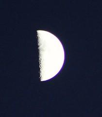 Half moon (cynthiarobb) Tags: