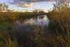 October Monday in the Wetlands (pdecell) Tags: bakerwetlands october fall lawrence kansas