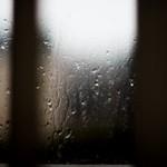 Wet thumbnail