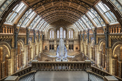 The Natural History Museum (Rich Walker75) Tags: architecture building buildings london canon eos100d efs1585mmisusm