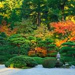 Japanese Flat Garden 4575 E thumbnail