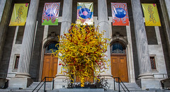 2017 - Montreal - The Sun by Dale Chihuly (Ted's photos - For Me & You) Tags: 2017 canada cropped montreal nikon nikond750 nikonfx tedmcgrath tedsphotos vignetting quebec montrealquebec chihulysun chihuly sun chihulysunsculpture glass blownglass montrealmuseumoffinearts chihulymontreal railing streetscene street publicart stairs doors archway pilars cans2s