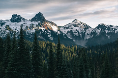 (JuanCarViLo) Tags: national park mount rainier mountain wilderness green trees fair wild sunset snow