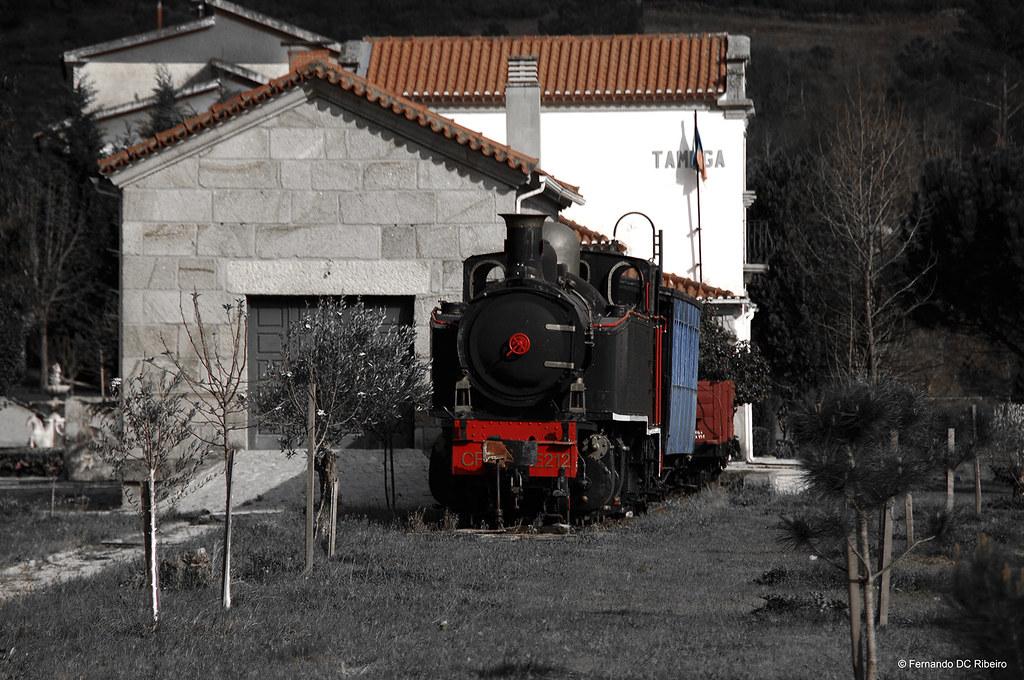 1600-curalha (575)