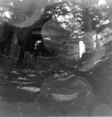 _2020765 (nikosaminira1) Tags: pinhole pinholecamera analog film filmphotografy analogphotografy diycamera papercraft papercraftcamera fisheyelike 120 120film 66format selfdevelopment caffenol bw