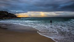 Tamarama Beach Sydney (Tonitherese) Tags: tamarama beach