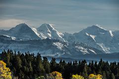 Alpenmassiv und Emmentaler Wälder (Thomas Neuhaus) Tags: schweiz switzerland emmenal berner oberland eiger mönch jungfrau tschuggen lauberhorn berg panorama alpen