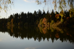 Blurry Lost Lagoon (Graham Fair) Tags: vancity stanleypark lostlagoon itsblurryok