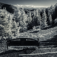 bench at aspen vista trail 01Oct17 (johngpt) Tags: wclwideconversionlens autumn santafe aspenvistapicnicgroundandtrail infraredfilter newmexico fujifilmfinepixx100 hoyar72irfilter trees bench niksilverefex hbm