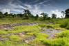 Preah Vihear, Cambodia (Aicbon) Tags: verde preahvihear phumikantuotsamroang cambodja cambodia camboya khmer kampuchea jemer tailandia forntera templo temple landscape green monsoon paisaje paisatge ប្រាសាទព្រះវិហារ asia sudestasiàtic southeastasia sudesteasiatico indochina indoxina conflicto border mountain ejercito cambodge cambogia camboja jiǎnpǔzhài 柬埔寨 kamboçya kambodia 캄보디아 kamboḍiyā कम्बोडिया kambodiya kambodja kambodscha kambodsja kambodža камбоджа kambodża камбоџа kambodzsa kamboja カンボジア καμπότζη kemboja կամբոդիա