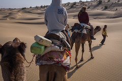 Rajasthan - Jaisalmer - Desert Safari with Camels-72