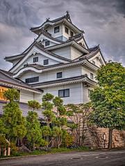 鳥取城 画像5