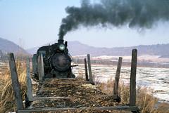 RIDING THAT TRAIN (dayvmac) Tags: chinesesteam steam locomotive loggingrailways trains china