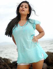 Indian Actress Ramya Hot Sexy Images Set-1 (78)