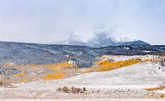 Rocky Mountain Autumn Snow-3126.jpg (marvhimmel) Tags: dustingofsnow general roadtrip kctrip co 2017 yellow