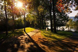 The sunny park @ the river Rhine