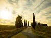 Mauro Amoroso © (Mauro_Amoroso) Tags: asciano tuscany italy toscana landscape natgeo nationalgeographic natgeocreative sunsetsunrise sunset sunrise mauroamorosoadventures nikkor nital nikonitalia