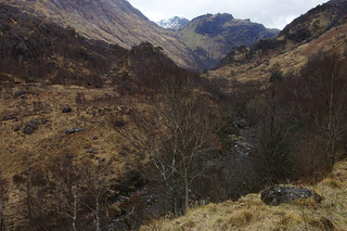 Day 5: Wilderness of Glen Nevis