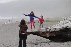 (FotoFreekus) Tags: foggy fog mist misty fun joy love driftwood play playing funny happy smile log wood b balance ocean wet water morning gray photographer moment decisive capture pink blue people