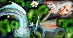 The sleeping mermaid (meriluu17) Tags: foxcity cynefin lorelei mermaid mer merfol merfolk tail fish svales fins sleeping fantasy surreal magical magic fae fairy lotus waterlilly lilly water drops people