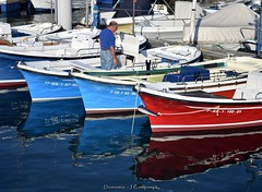 DSC_0056 (Pep Companyó - Barraló) Tags: una tarda donostia san sebastian guipuzkoa pais basc euskadi vacances josep companyo barralo mar cantabric