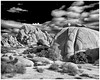 On the Rocks (claudiov958) Tags: biancoenero blackwhite blancoynegro california černýabílý claudiovaldés czarnyibiały desert landscape mediumformat mediumformatdigital ngc noiretblanc pentax645z pentaxart pentaxfa6453355mmf45 photoka pretoebranco rocks schwarzundweiss thecoloradodesert черноеибелое