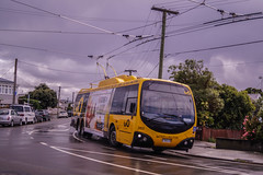 Lyall Bay- Turning from Rua Street into Sutherland Road (andrewsurgenor) Tags: transit transport publictransport nzbus gowellington electric trackless trolleybus trolleybuses wellington nz streetscenes bus buses omnibus yellow obus busse citytransport city urban newzealand