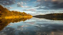 Bright & dark (Sebo23) Tags: reflections reflektionen mindelsee autumn autumnmood herbst hersbstimmung lichtstimmung licht landscape landschaft light goldenlight canon6d canon16354l naturaufnahme nature natur
