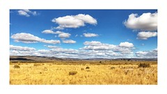 Quail Country (Johnrw1491) Tags: iphone fall autumn oregon hidesert grass blueskies landscapes prairie scenery