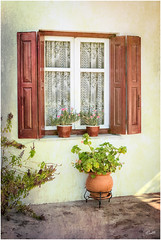 Aegean morning (mad_ruth) Tags: lesvos window shutter flowers textures aegean pentax k1